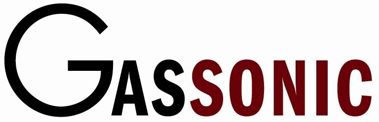 Gassonic Observer-i Gas leak detector Gassdetektor akustisk acoustic gasslekkasje gassalarm gassmåler sniffer ultrasonic MSA